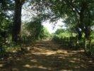 En Bici por Ometepe